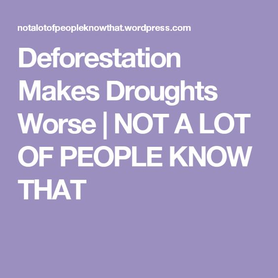 Deforestation Makes Droughts Worse | NOT A LOT OF PEOPLE KNOW THAT