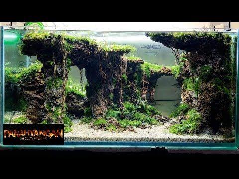 Step By Step Aquascape Dengan Batu Garang Replika Iaplc Takayuki Fukada Youtube Ikan Akuarium Aquarium Ikan Planted Aquarium