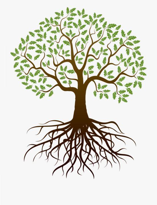 16 Family Reunion Tree With Roots Clipart Png Arvore Desenho Arvore Celta Arvore Da Vida
