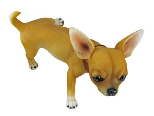 TERRITORIAL SCAMP Peeing Chihuahua Garden Statue Figure by