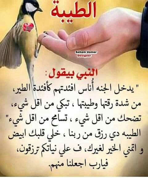 Pin By يحيى تركو On طيور ملونة جميلة متحركة Thumbs Up Save