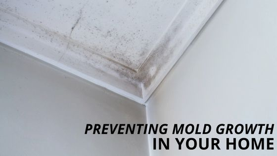 Preventing Mold Growth in Your Home Mold can grow anywhere from carpet to paper and in places you can't see such as the back of drywall or around ceiling tiles. Mold is a problem that can be difficult and expensive to fix as well as produce allergens and irritants that can compromise the health of you and your family. The best thing is to prevent mold before it becomes a problem and the key to that is moisture control. Here are our tips to prevent mold growth in your home: