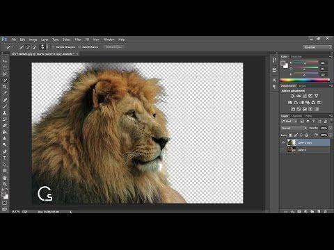 شرح طريقة قص الصور باحترافية شديدة باستخدام الفوتوشوب Youtube Animals Image Lion