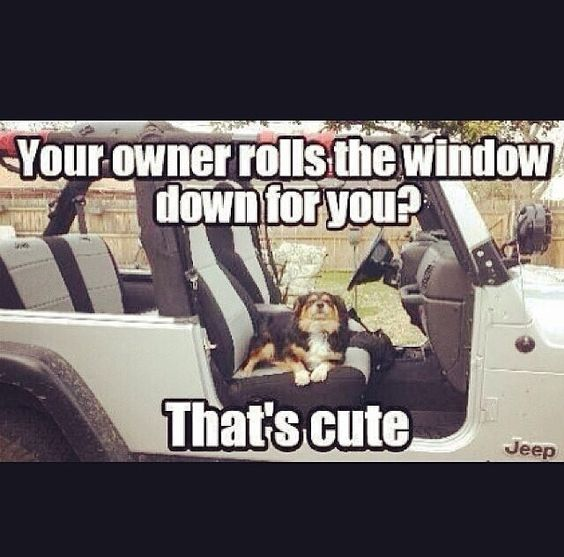 Jeep wrangler quotes / dogs   Vickie_Fontenot  
