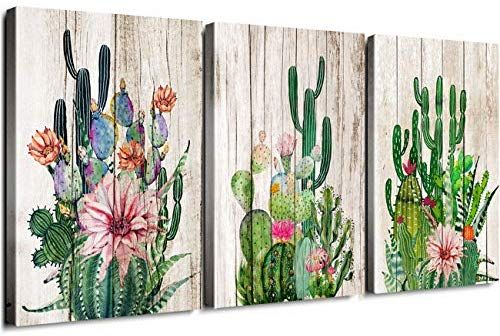 Cactus Room Decor Amazon