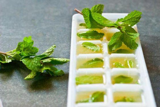 cubitos de zumo de lima con menta