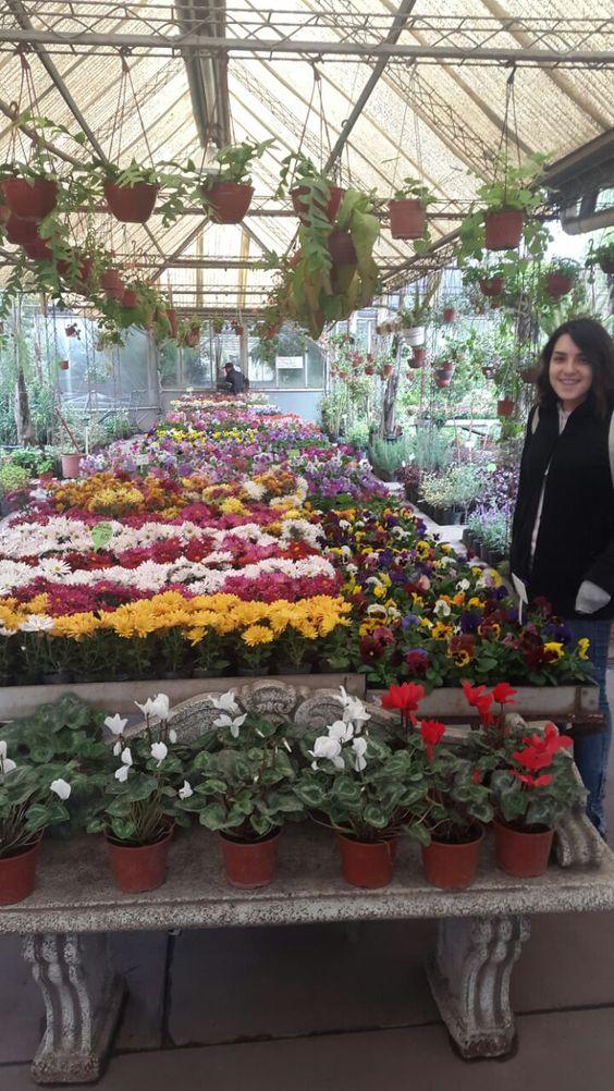 Vivero en Berazategui, visitando a una amiga. Más rápido que flash fui ✨