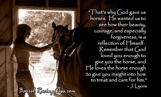 the moment when you feel god watching you through the eyes of a horse: