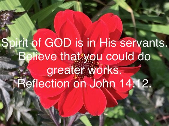 JESUS is LORD  Spirit of GOD is in His servants. Believe that you could do greater works.  Reflection on John 14:12. Betul Can