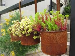 Up-cycle tin containers for a beautiful rustic garden