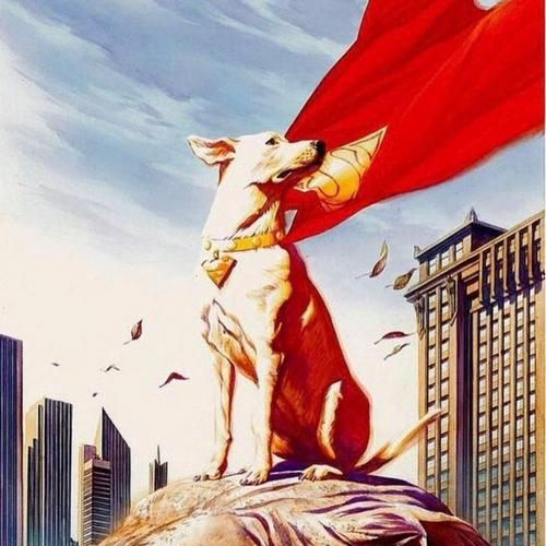 Original Motion Picture Soundtrack For The Adventure Comedy Superhero Animated Film Dc Super Pets 2022 The Music Was Compose Animation Film Pets Movie Soundtrack Music