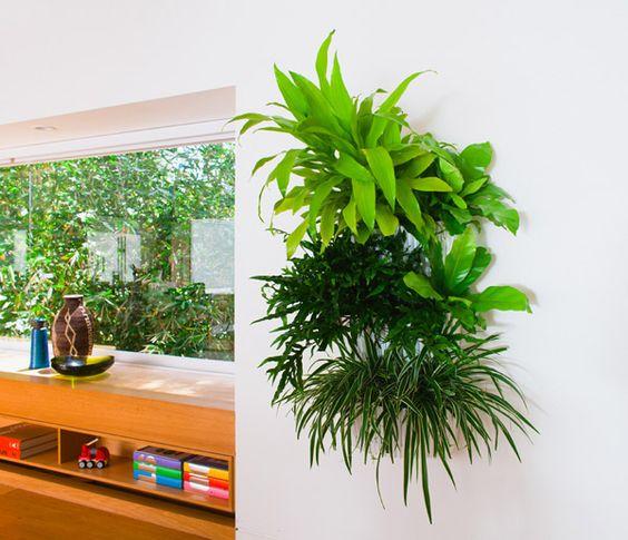 Woolly pocket indoor plastic pocket indoor wall plants for Living wall planter