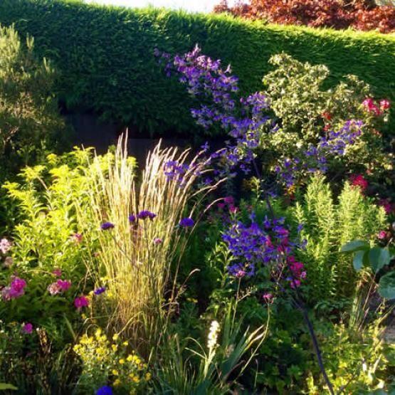 Gardening in Brockenhurst Hampshire