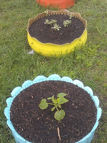 Turn old tires into colorful backyard planters: