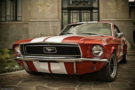 Mustang. Best car ford has made of alllll time