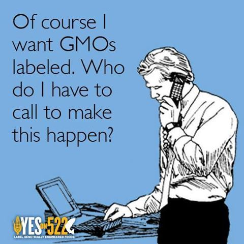 Join Yes On 522 for their phone banking volunteer training. Sign up here: http://action.yeson522.com/page/s/VolunteerTraining: Gmos Genetically, Action Yeson522, Modified Food, Label Gmos, Labeling Gmos, Healthy Foods, Healthy Life Gmo, Monsanto Gmos
