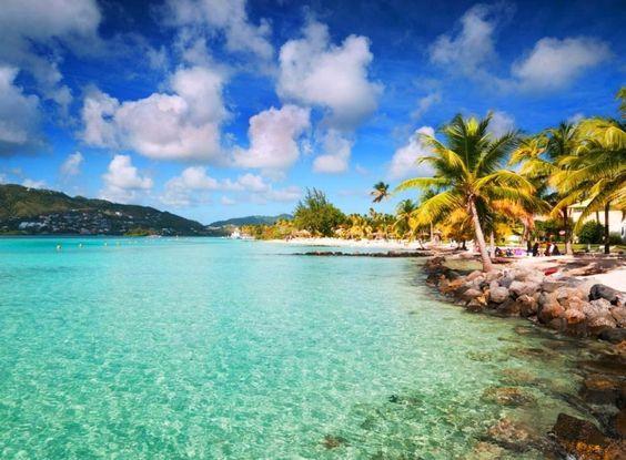 В зимнее приключение - на Карибы!  На улице стоят январские морозы, а мы с вами отправляемся в царство солнца и тепла! Как же хочется окунуться в лазурное море и погрузиться в запахи тропиков, попробовать что-нибудь необычное из местной еды и раствориться в шуме волн и теплого ветра! Отправившись на Карибы, у вас будет возможность каждый день открывать для себя новый остров и новую сказку, познакомиться с новыми друзьями и увидеть невероятный мир животных и подводного царства!