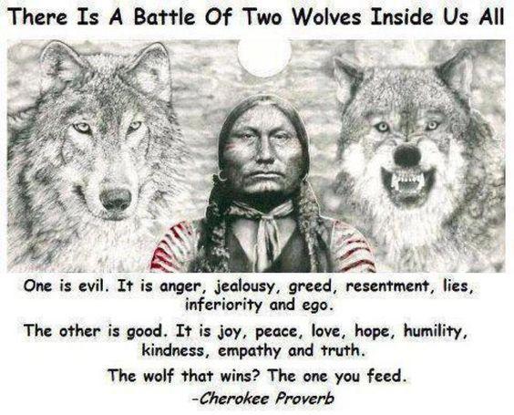Image result for 2 wolves inside us