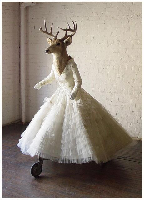 """""""Deer Bride Of Mine"""" This amazing pic reminds me of a few scottish weddings I've been to for some reason!"""