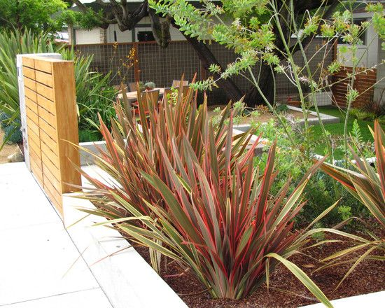 Wood Patio With Border Plants Good Pr Design Pictures