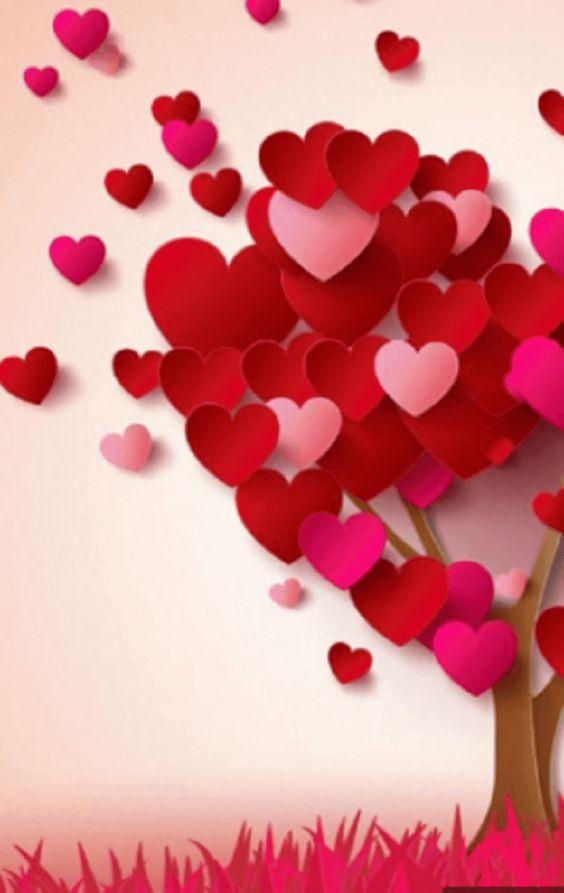 الصور والرسائل الغرامية شرط عبور الحدود Romantic Messages Romantic Messages