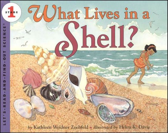 What Lives in a Shell? (LRAFOS1) | Main photo (Cover)