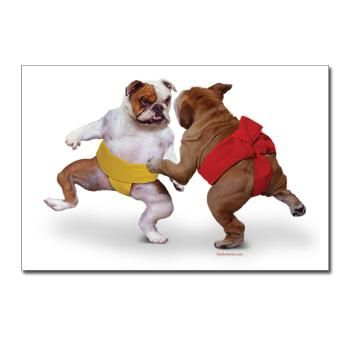 Sumo Dogs