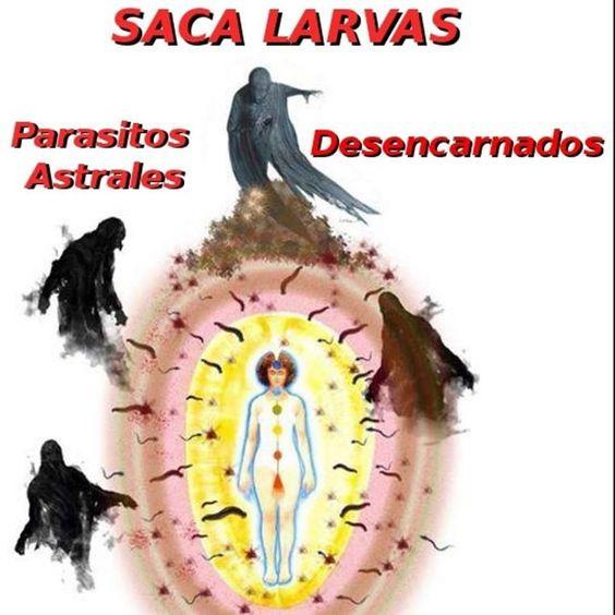 Isis Alada: SACA LARVAS ASTRALES.DESTRUCTOR DE LARVAS ASTRALES...: