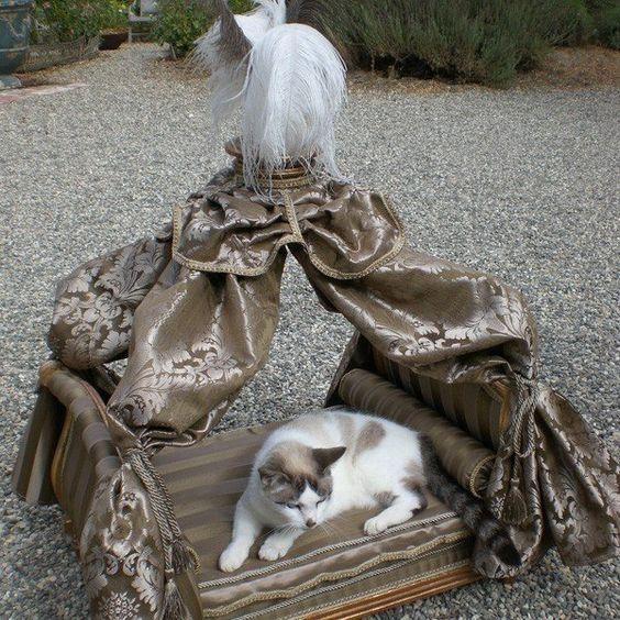 Bronze Designer Bed For Cats