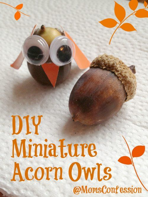 Diy miniature acorn owls finally a use for the huge pile for Diy acorn crafts