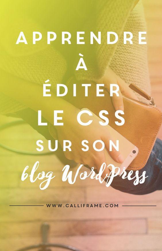 Comment éditer le CSS sur son Blog WordPress?