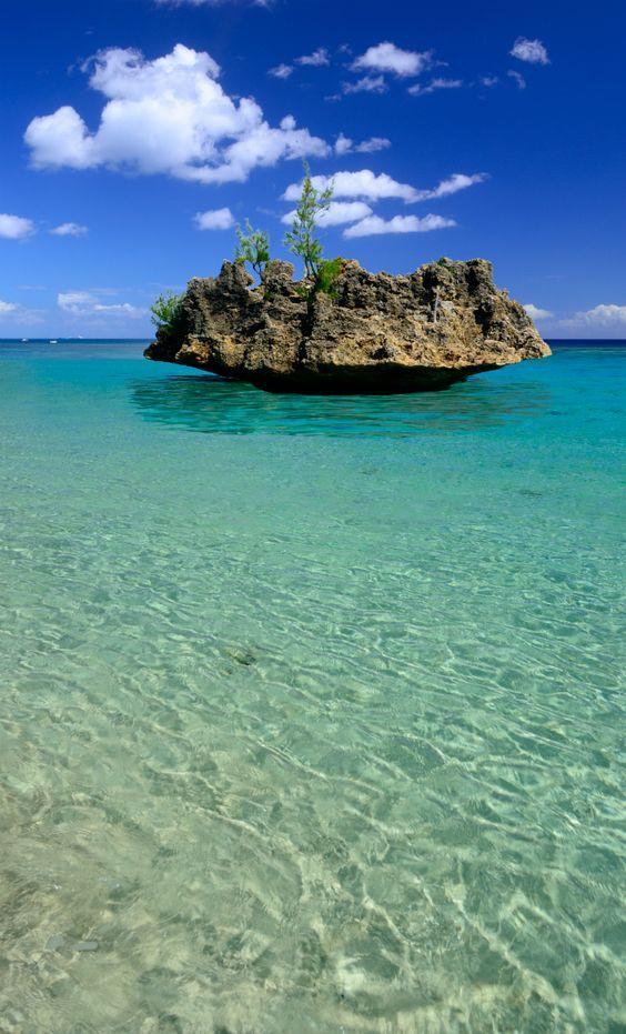 Coral rock off the coast of Mauritius