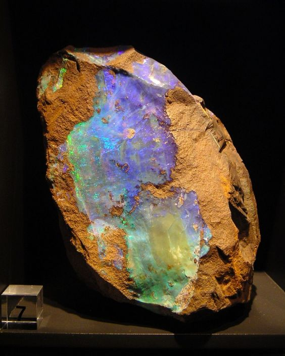Opal from Queensland, Australia | The Natural History Museum, London