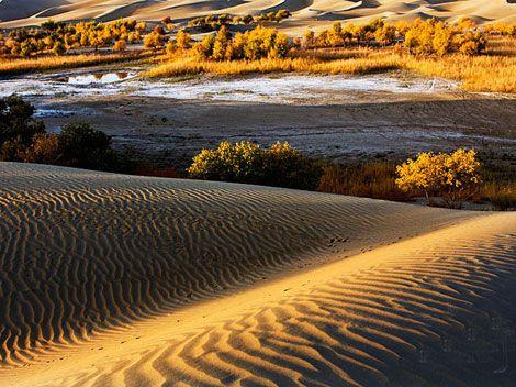 Taklimakan Desert in Xinjiang