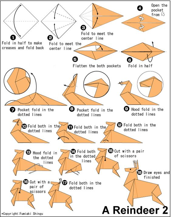 Origami Deer Instructions Craft Ideas Pinterest Deer Origami Paper And Diys