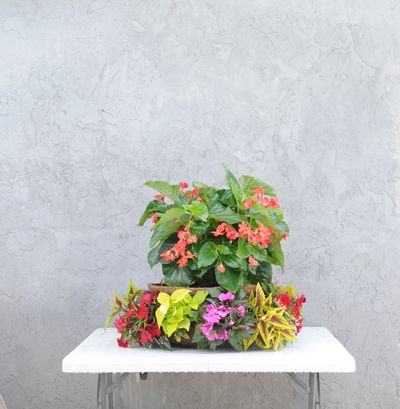 Pamela Crawford Flower Tower Flower Tower Container Flowers Flowers