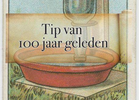 Tip van 100 jaar geleden: een waterfontein voor je kippen