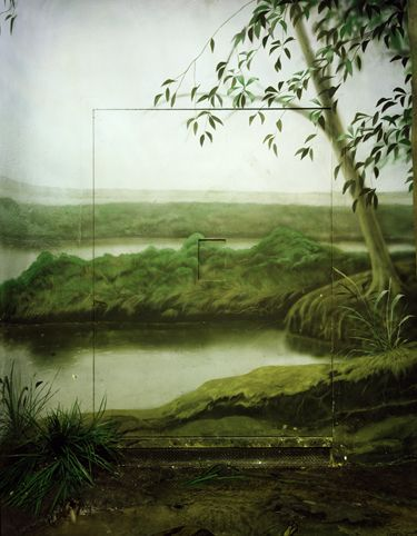 Artist: Comenius Roethlisberger,  title: Bronx Zoo New York,  technology: Diasec on Alucobond