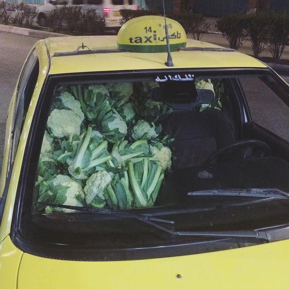 Eu já tinha visto gente gostar muito couve-flor mas nada se compara a isso! O carro estava totalmente lotado com esse vegetal do chão ao teto mal tinha espaço pro motorista sentar. #Palestina by papacapim_sandra