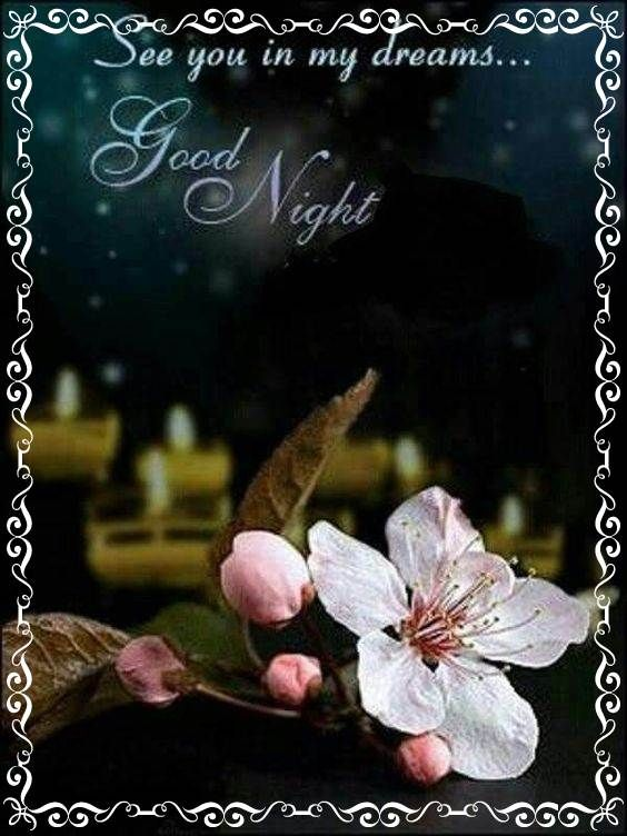 Images Of Good Night Sweet Dreams Gameafk Romantic Good Night Good Night Sweet Dreams Good Night Sweetheart