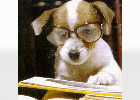 Wish I looked this good when I read!