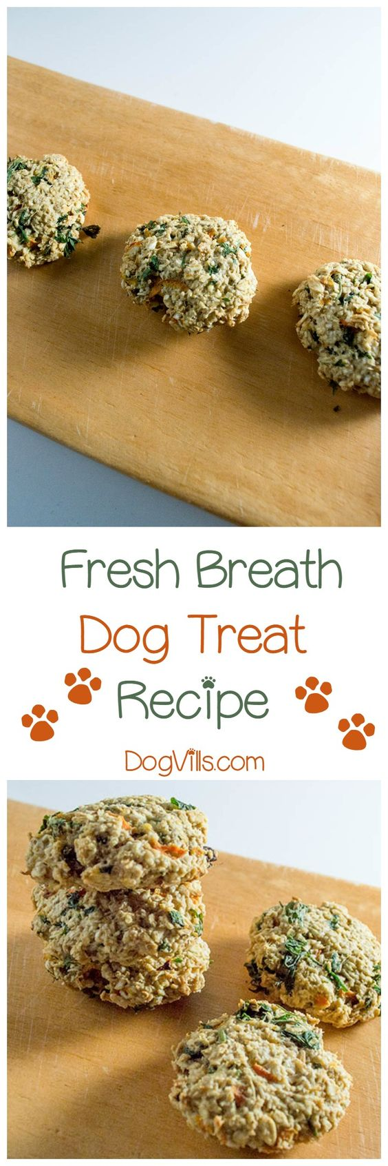 Make your own Homemade Dog Treats — 53+ Recipes in NEW DIY Dog Treat Recipe Cookbook for the Busy Dog Lover - Great Gifts for Dog Lovers and their Dogs in this Amazon Bestseller Dog .