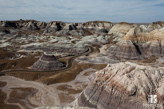 Petrified Forrest, Painted Desert, National Park, Teresa K photography by Teresa | teresakphotography.com, via Flickr