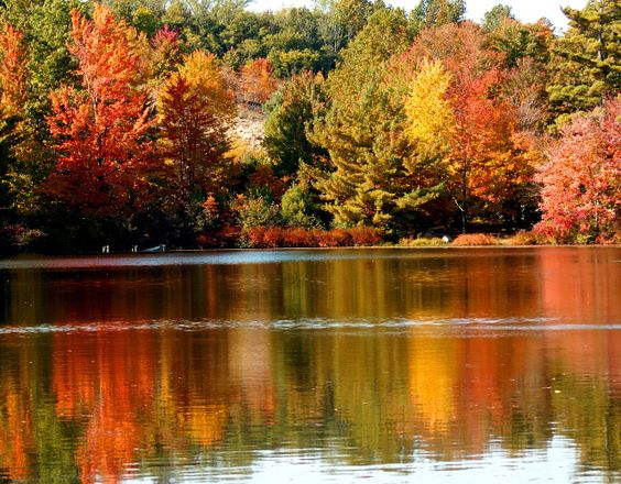 Start a New Thanksgiving Tradition  photo by mbgphoto of a lake in Michigan in the Autumn