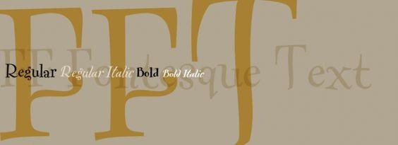 FF Fontesque Text font download