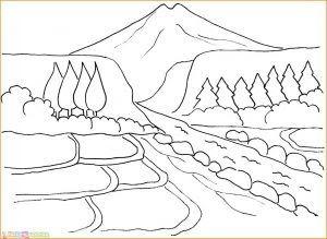 Gambar Yang Bagus Dan Mudah Dibuat Sketsa Buku Mewarnai