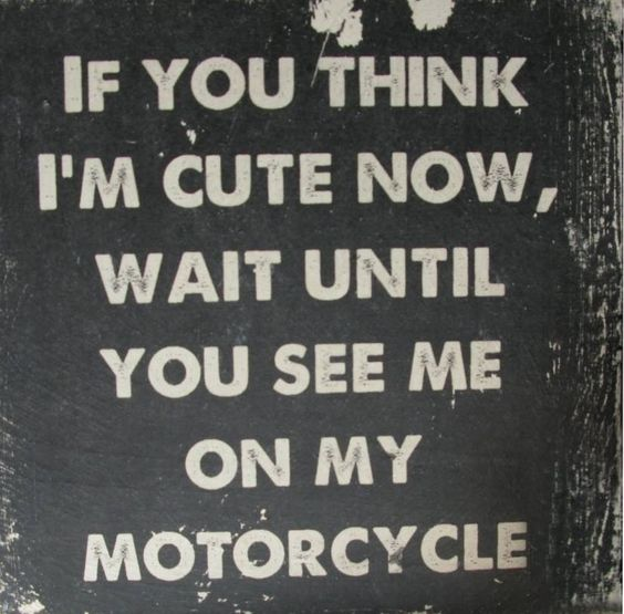1000+ Funny Motorcycle Quotes On Pinterest