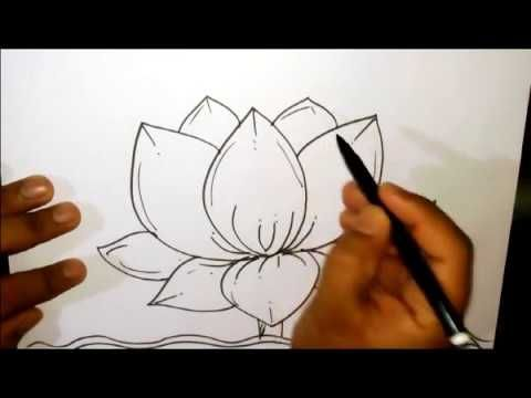 How To Draw A Lotus Lotus Scenery Drawing In Easy Steps Drawings Lotus Flower Drawing Flower Drawing Lotus Drawing
