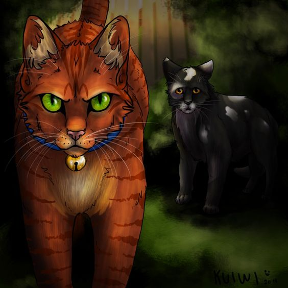 fireheart says goodbye to smudge you go firestar heart paw rusty warriors pinterest. Black Bedroom Furniture Sets. Home Design Ideas