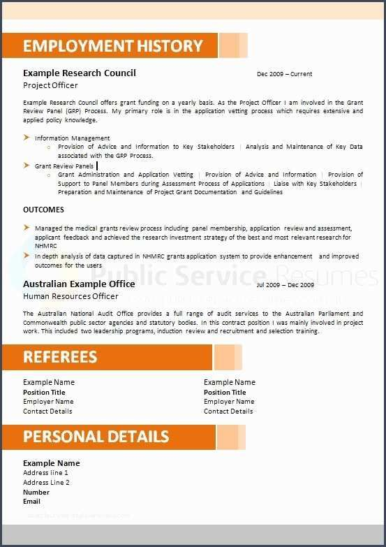 Nicecontemporary Government Resume